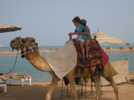 Just some boys and their camel, by the sea.