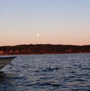 July's full moon from the middle of Casco Bay off of Mere Point, ME